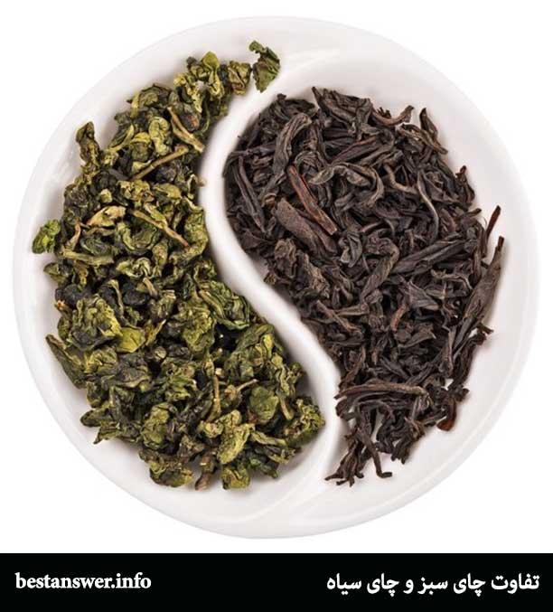 تفاوت چای سبز و چای سیاه چیست
