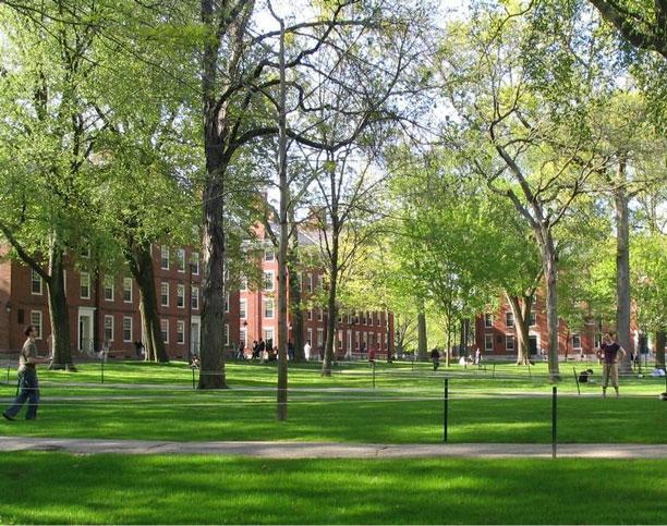 عکس حیاط و محوطه فضای سبز دانشکده ها - دانشگاه هاروارد - Campus
